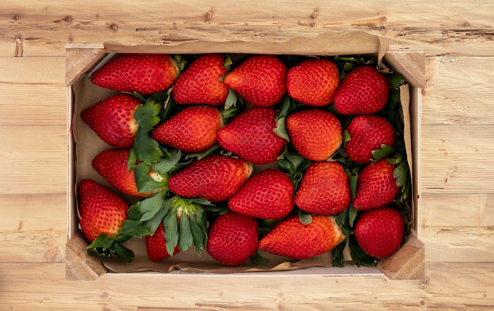 Erdbeeren - Beerenglück